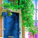 Kolorowa roleta Holandia_pixabay